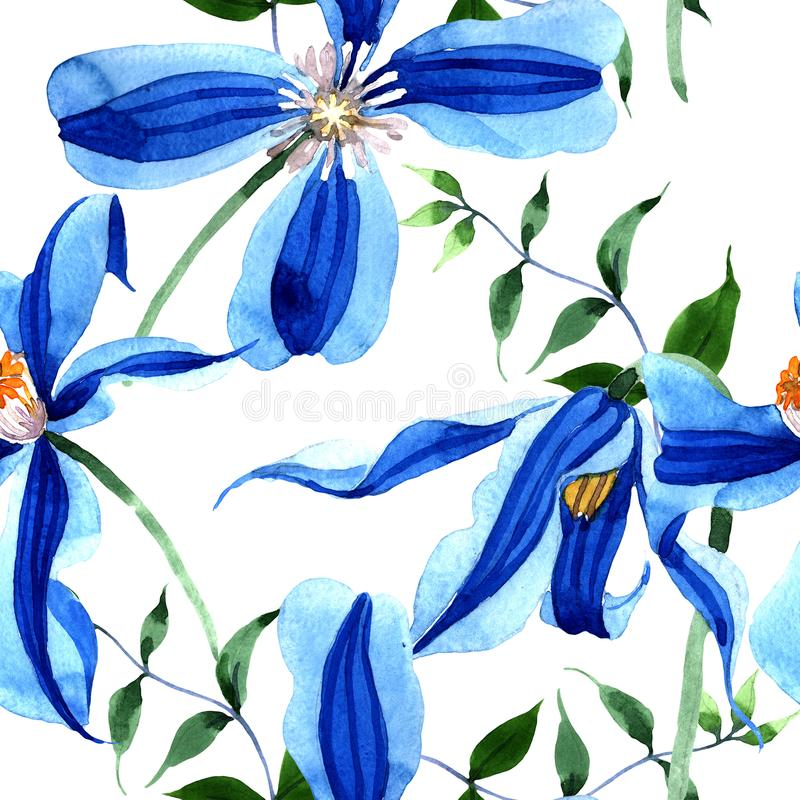Blue durandii clematis. Floral botanical flower. Seamless background pattern. Fabric wallpaper print texture. Aquarelle wildflower for background, texture stock illustration