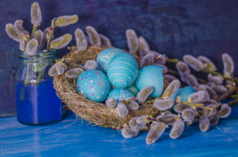 Blue Easter egg in the nest and branch of a willow stock image