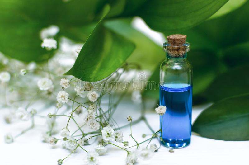 Blue essence healing tincture on white wooden table background. Essential oil. royalty free stock photo