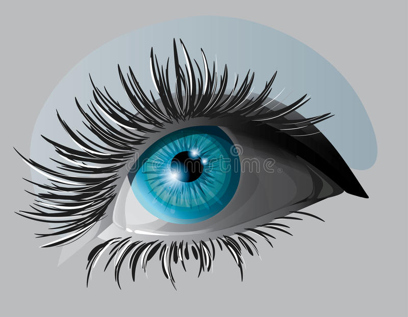 Blue eye. With cilia vector illustration