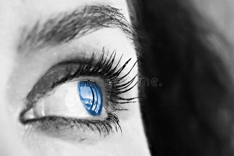 Download Blue Eye stock image. Image of parts, glance, focus, face - 1695953