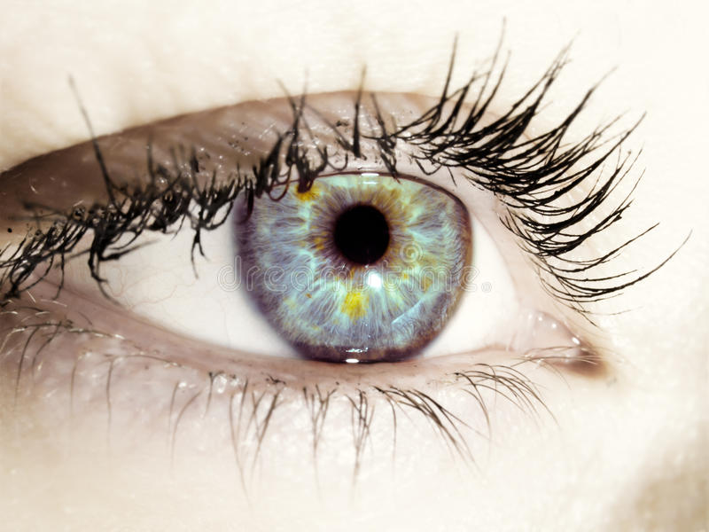 Blue eye. Picture with very blue eye looking far away, simple blue, sharp and beautiful eyes, women eye, iris stock photo