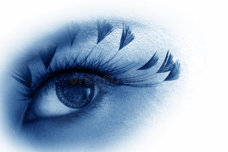 Download Blue eye stock photo. Image of skin, optical, look, abstract - 23514014