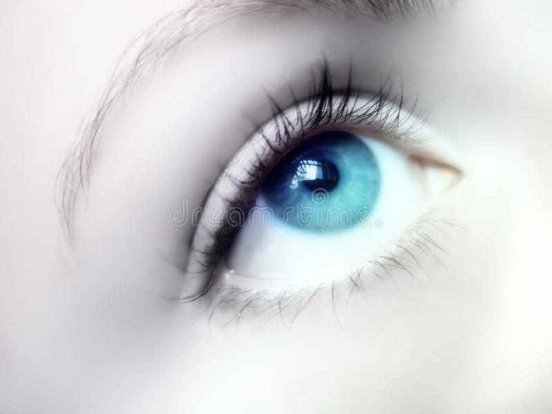 Download Blue Eye stock image. Image of iris, beauty, ophthalmic - 27459857