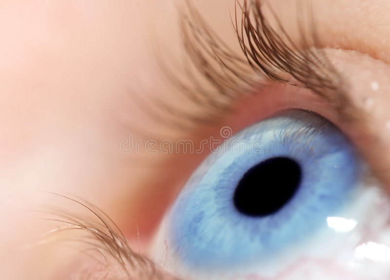 Download Blue eye stock photo. Image of sights, brown, hole, eyesight - 3808374