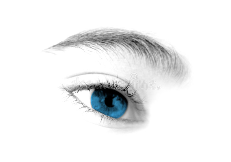 Blue eye. Isolated over white - high key royalty free stock photo
