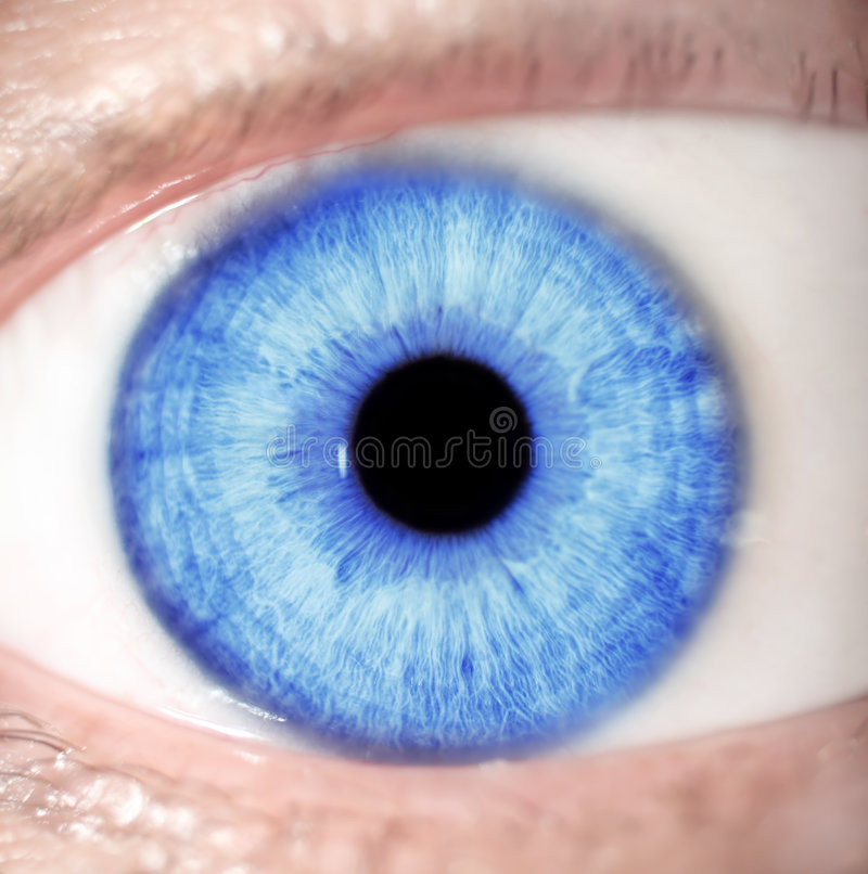 Blue eye royalty free stock photography