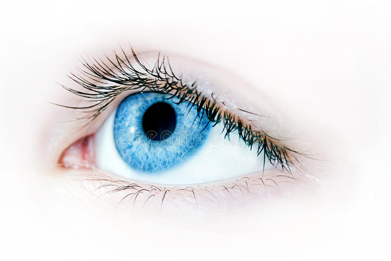 Blue eye macro. Macro shot of a beautiful blue eye royalty free stock images
