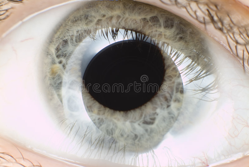 Blue eye in macro stock photo
