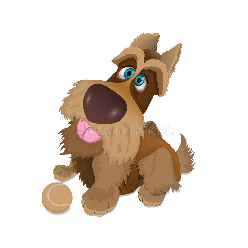 Blue-eyed shaggy dog with a tennis ball on a white background vector illustration