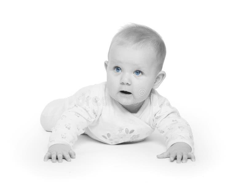 Download Blue Eyes Stock Photos - Image: 12741083