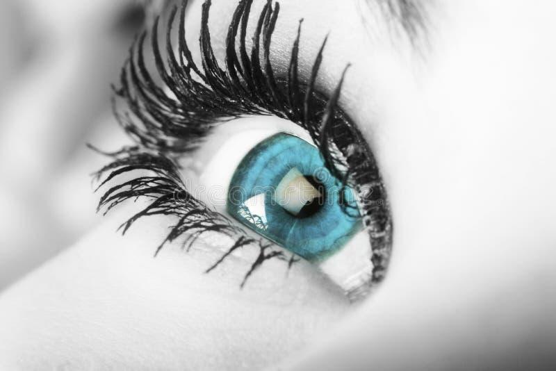 Blue eyes. Enchanting blue eye with gorgeous eyelashes stock image