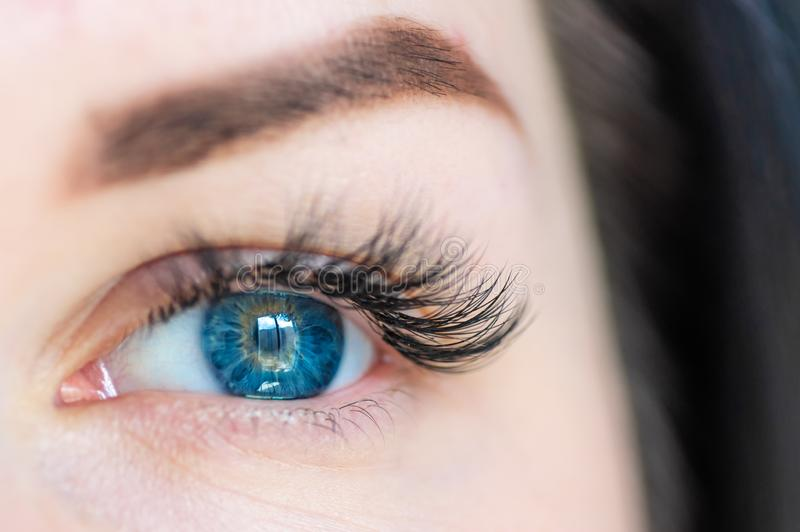 Blue eyes. Close up of a woman`s eye. Eyelash extensions stock image