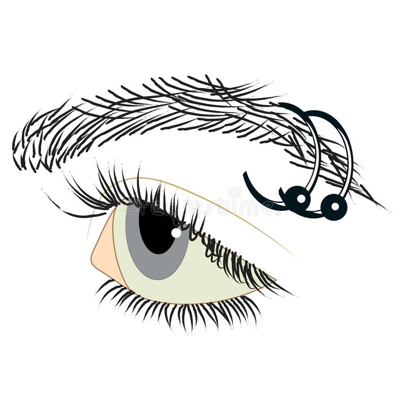 Blue eyes and eyebrow piercing, two earrings royalty free stock image