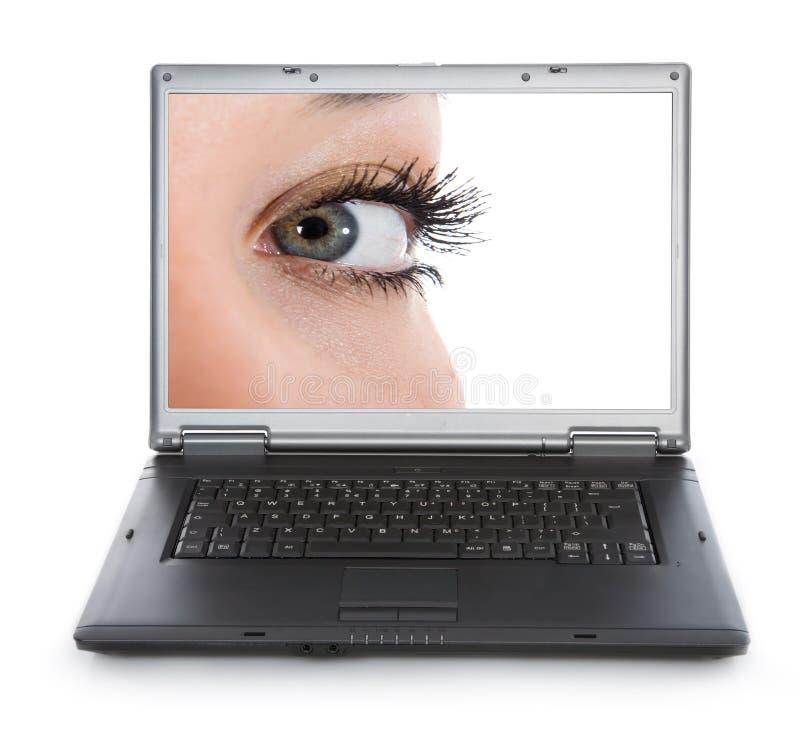 Blue eyes on white royalty free stock image