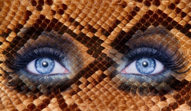 Blue fashion makeup eyes snake skin texture stock images
