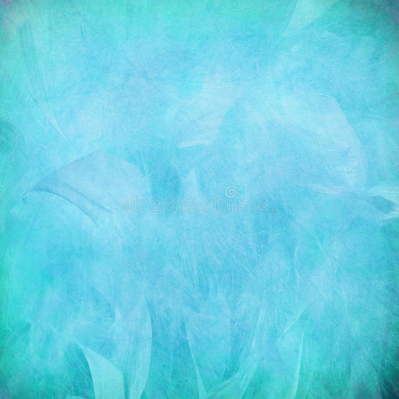 Blue feather abstract on paper. Textured background royalty free stock photos