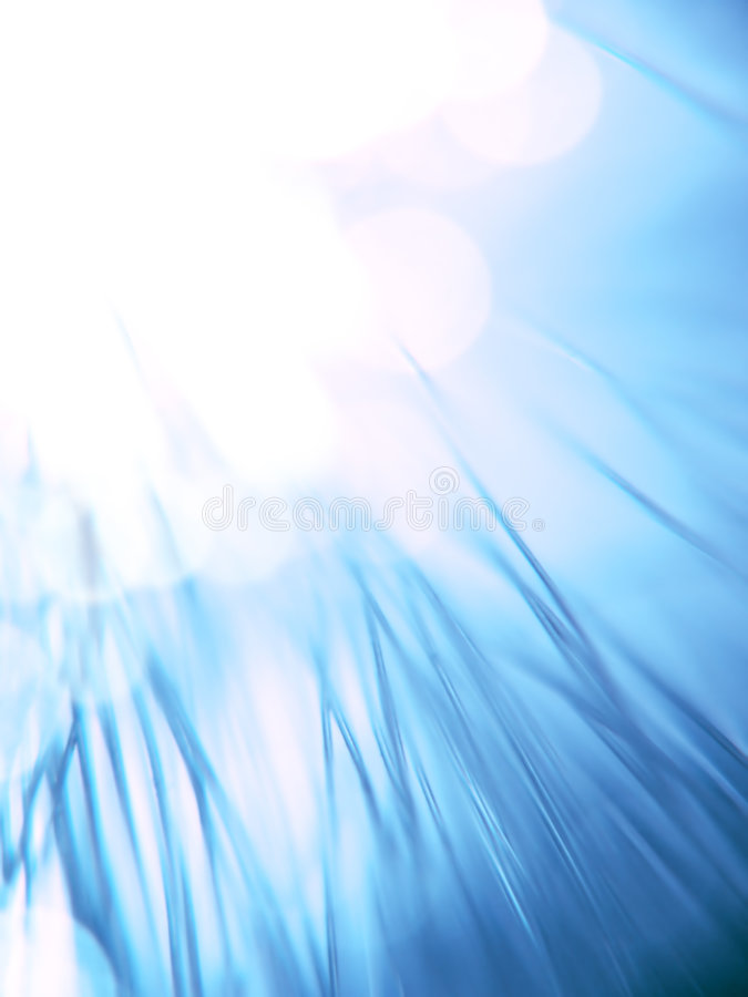 Blue fiber optics. Strands close-up stock images