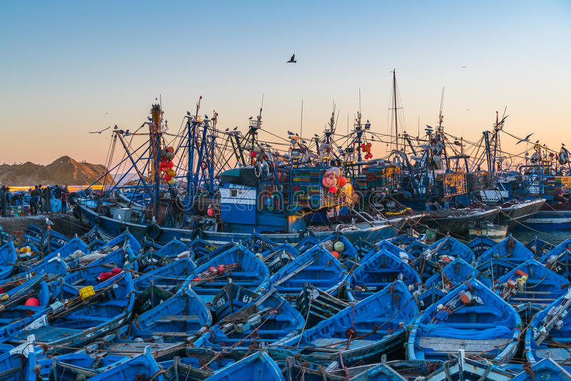 Blue fishing boats in the port of Essaouira, Morocco stock images