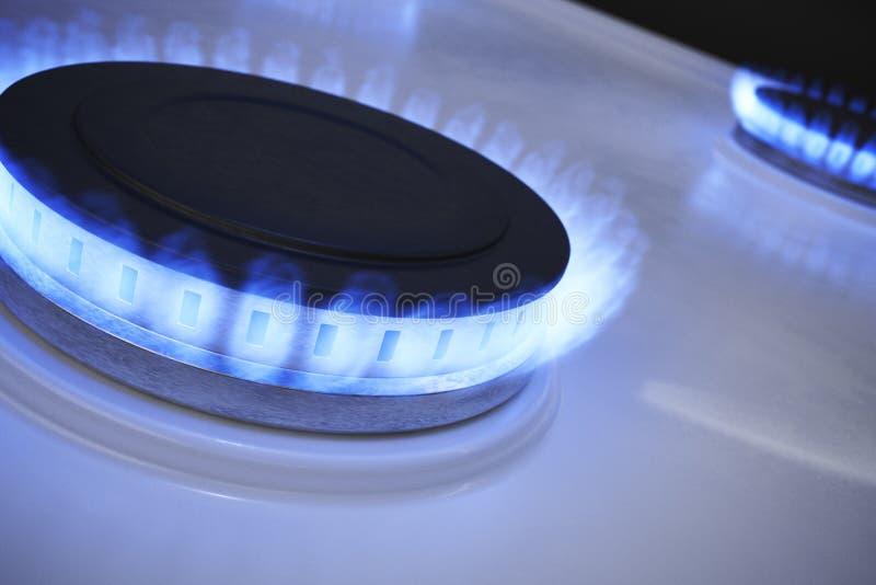 Blue flame from gas burner. 3D rendered illustration.  vector illustration
