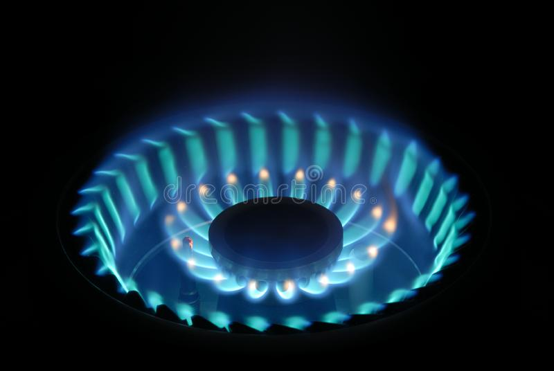 Blue Flame on Gas Stove