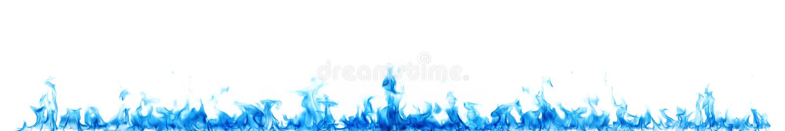 Blue flames on white stock photography