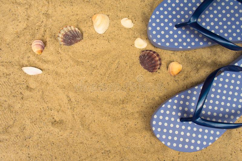 Blue  flip flops,  on sandy beach with seashells stock images