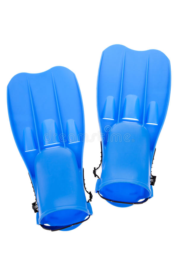Blue flippers royalty free stock images