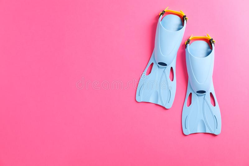 Blue flippers on pink background. Space for text royalty free stock photography
