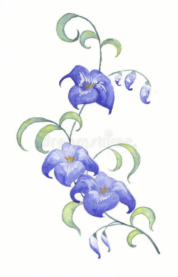 Download Blue Flowers Royalty Free Stock Images - Image: 5714589