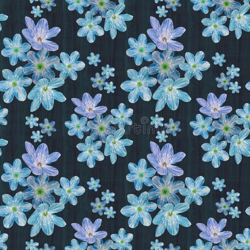 Floral seamless pattern on abstract background. royalty free stock images