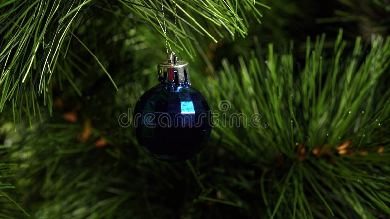 Blue fur-tree toy on a green Christmas tree. 4K UHD 3840x2160 Video Clip royalty free stock photography