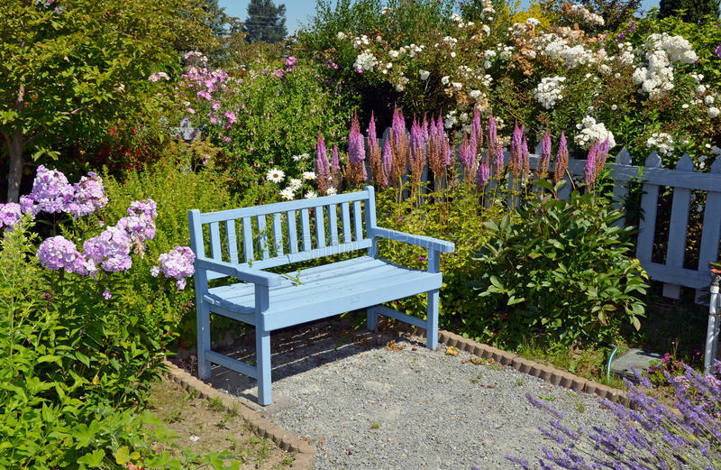 Blue garden bench. Blue wooden garden bench in summer garden royalty free stock image