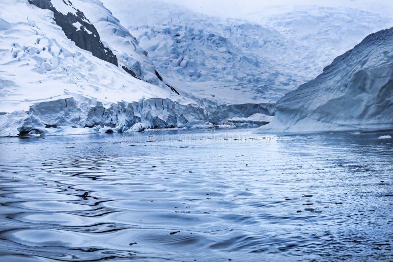 Blue Glacier Snow Mountains Paradise Bay Skintorp Cove Antarctica stock photography