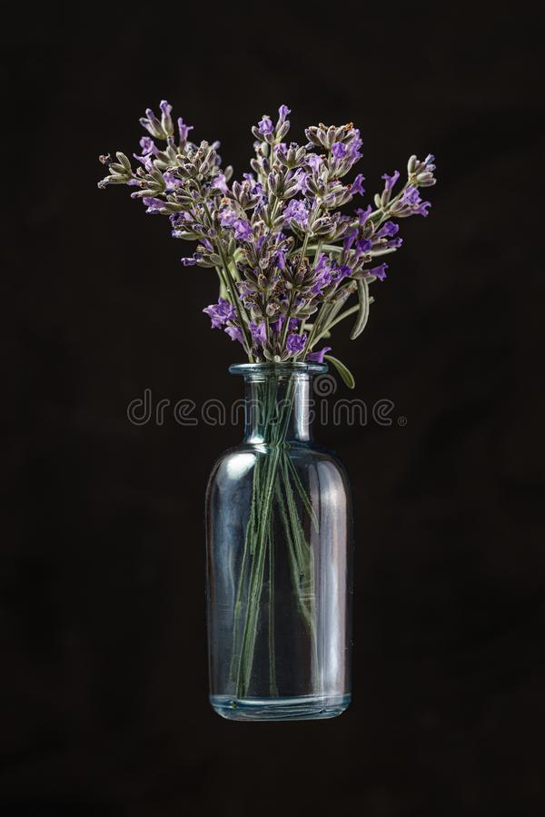 Blue glass bottle with lavender flowers on black background. Aromatherapy stock photo