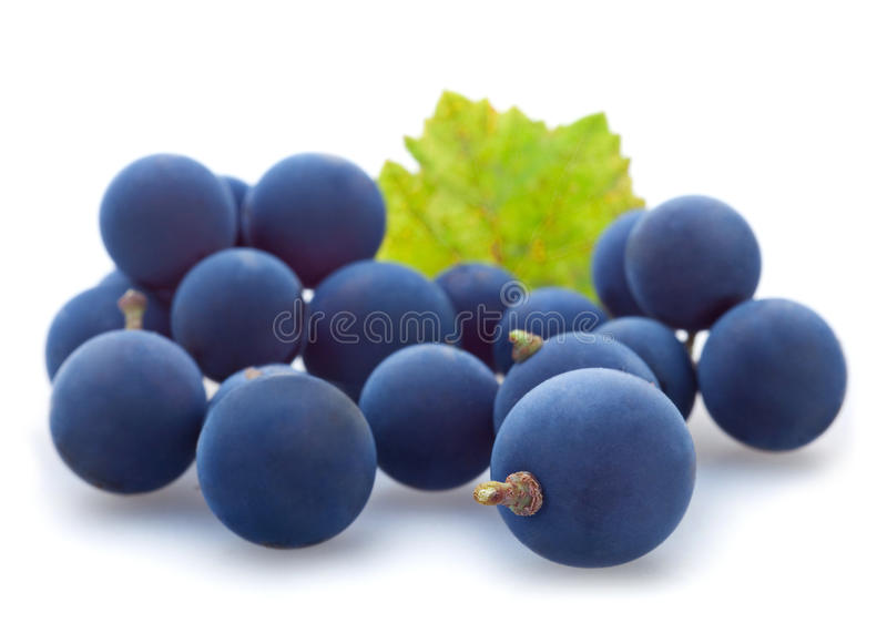 Blue grape berry royalty free stock images