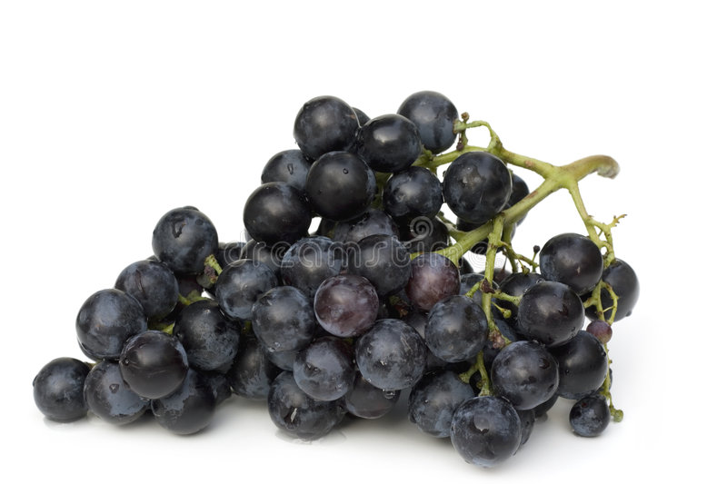 Blue grape cluster royalty free stock image