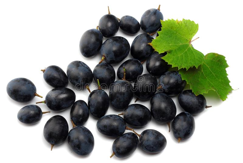 blue grapes berries with leaves isolated on white. top view royalty free stock images