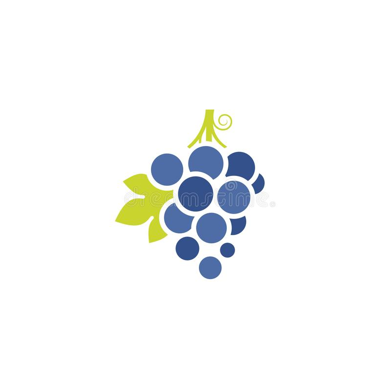 Blue grapes. Fresh berries with leaves. Vector illustration EPS vector illustration