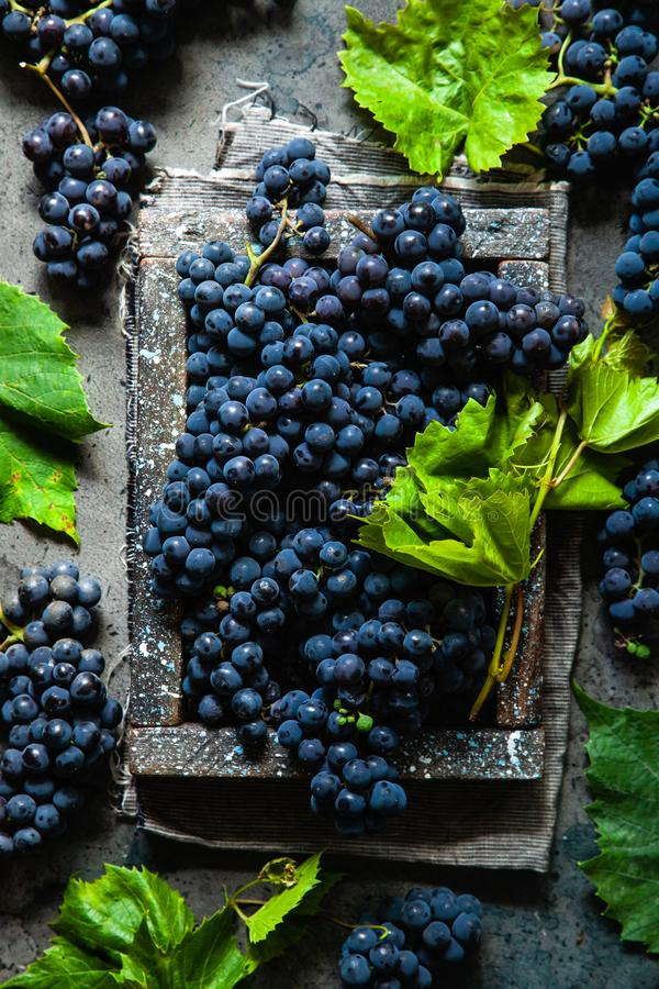Blue grapes in a wooden box with green leaf on a rustic background. royalty free stock photography