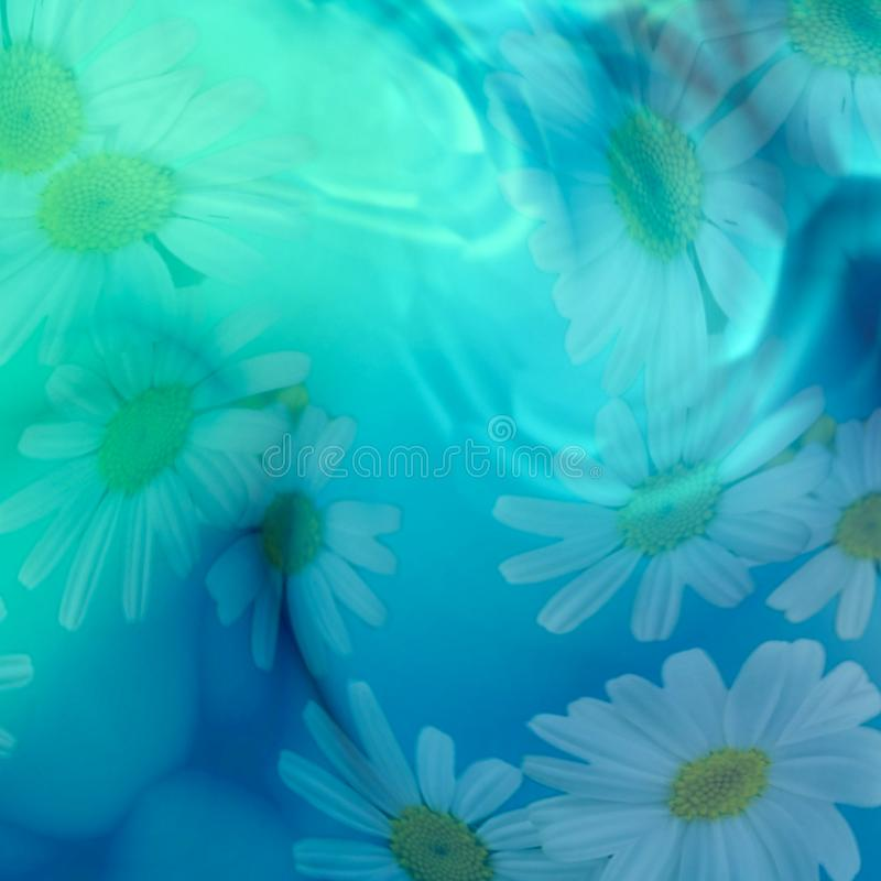 Glowing marguerites backgrounds. Blue-green marguerites world. Bright green, blue and white colours with daisies. Background vector illustration