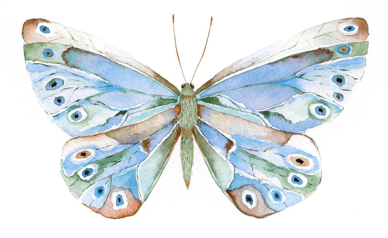 Blue and green fantasy butterf stock illustration