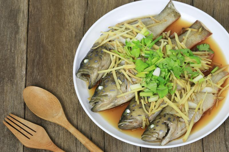 Blue Grouper fish steamed of soy sauce in white dish on brown wooden floor. stock photos