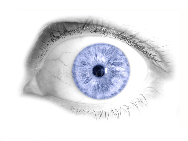 Blue Human Eye Isolated Photo. An isolated human eye in a nice blue shade. Very detailed macro royalty free stock photos