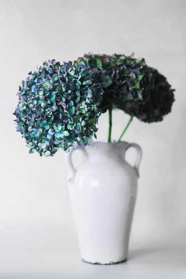Blue hydrangea flowers on a gray background stock photos