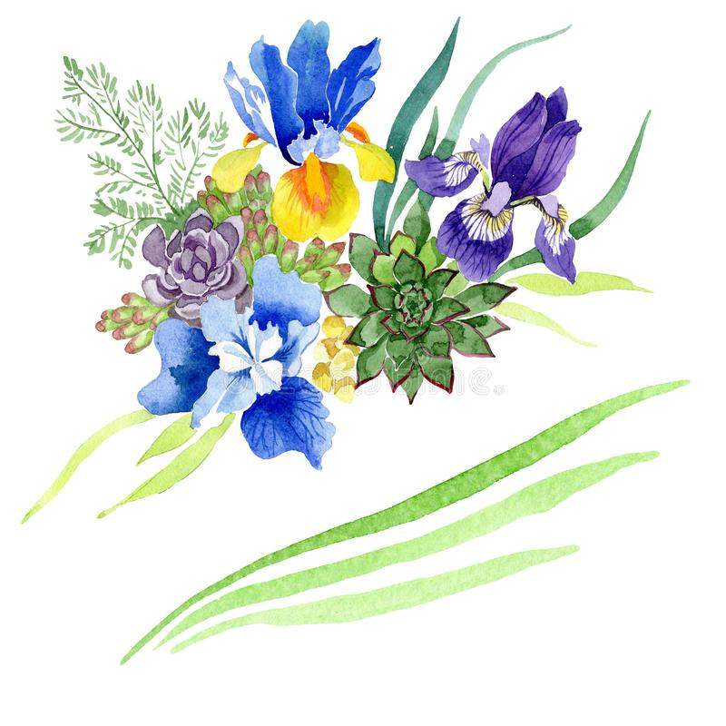 Blue irises bouquet floral botanical flowers. Watercolor background set. Isolated bouquet illustration element. Blue irises bouquet floral botanical flowers royalty free stock photos