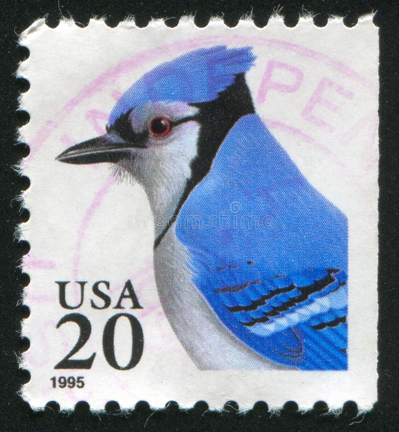 Blue Jay. UNITED STATES - CIRCA 1995: stamp printed by United states, shows Blue Jay, circa 1995 stock images