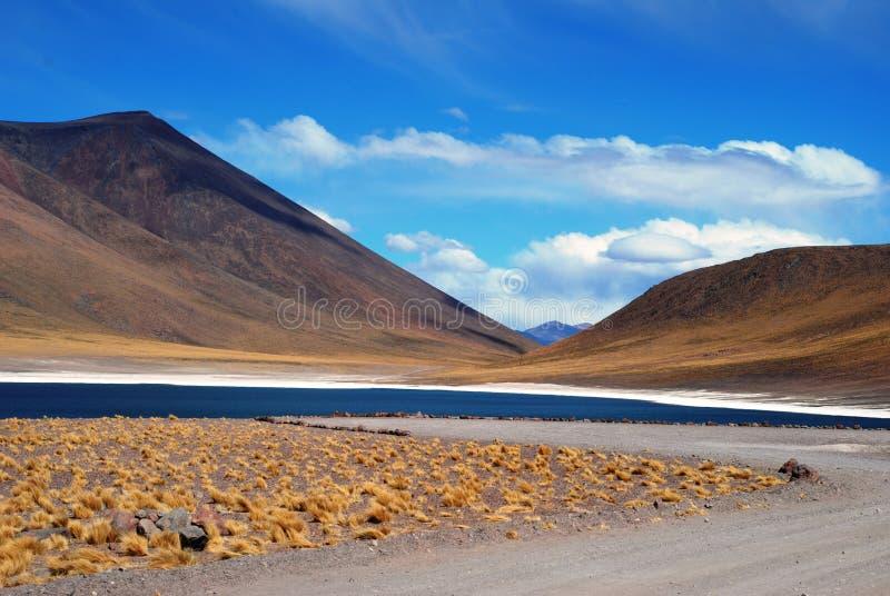 Blue lake in the desert stock image
