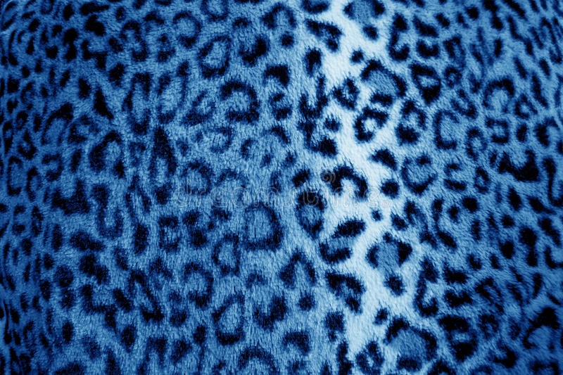 Blue leopard animal print fur pattern - fabric royalty free stock photo