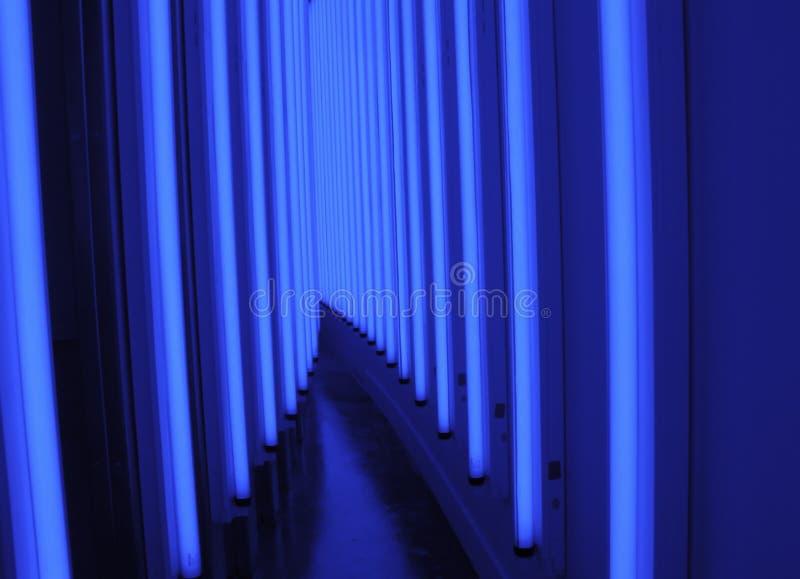 Blue Light Walkway royalty free stock photo